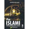 Pse Islami është zgjedhja e vetme?